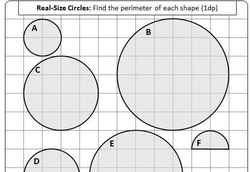 Circle - Circumference & Perimeter - Worksheet C