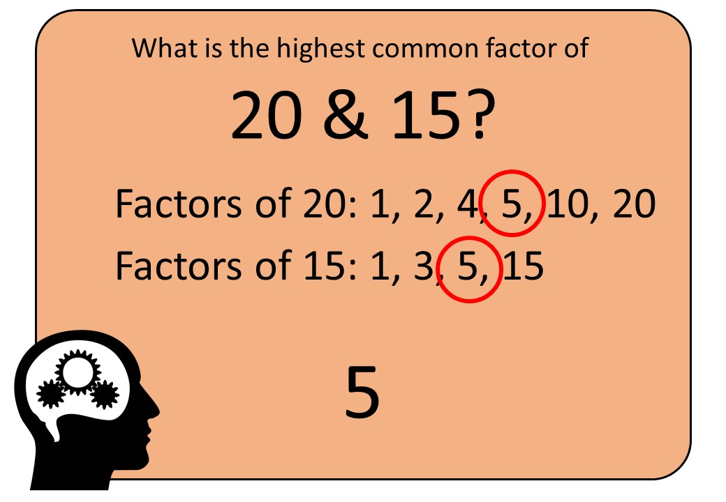 Highest Common Factors - Listing - Bingo M