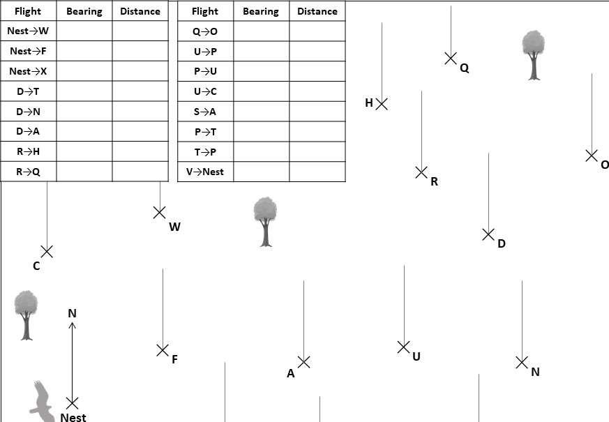Scale Drawings & Bearings - Worksheet E
