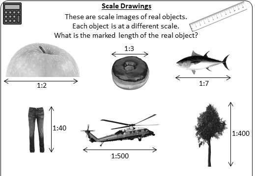 Scale Drawings - Worksheet D