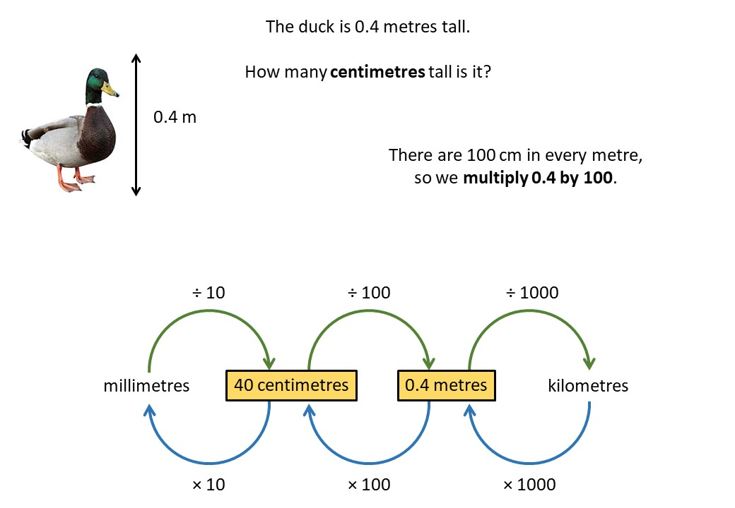 Systems of Measurement - Metric - Demonstration