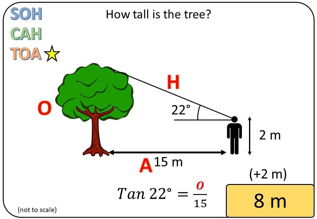 Trigonometry - Practical Problems - Bingo M