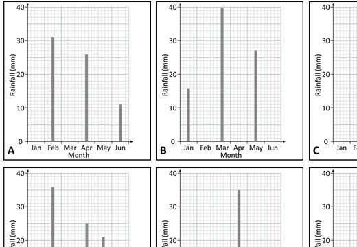 Vertical Line Chart - Card Complete & Match